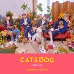 Download nhạc hot Cat & Dog (English Version) (Single) mới nhất