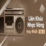 Download nhạc miễn phí Liên Khúc Nhạc Vàng Hay Nhất (Vol. 3) - Đan Nguyên, Y Phụng