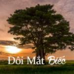 Tải bài hát online Đôi Mắt Biếc Mp3