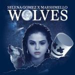 Wolves - Selena Gomez, Marshmello | Nghe nhạc nhanh