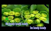 Xem video nhạc Lonely (Karaoke) hay nhất