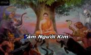 Tải nhạc Hội Liên Hoa Kính Mừng Phật Đản Cover mới nhất